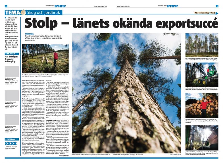 Norrbottens Affärer, skogsindustri